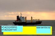 Компания «морской сервис» оказывает услуги.