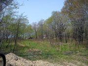 Дачный участок 10 соток в дачном кооперативе поселка Мирный
