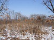 Участок земли в собственности,  расположенный в поселке Мирный