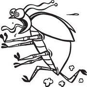 Уничтожение тараканов и клопов во Владивостоке